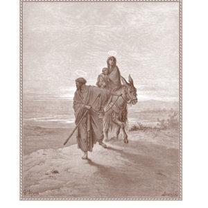 Biblia zk JPII 2015.indb